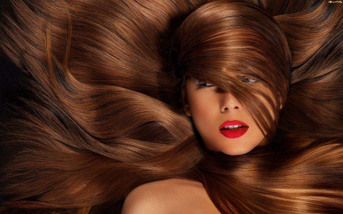 Haaröle – Anwendung und Eigenschaften